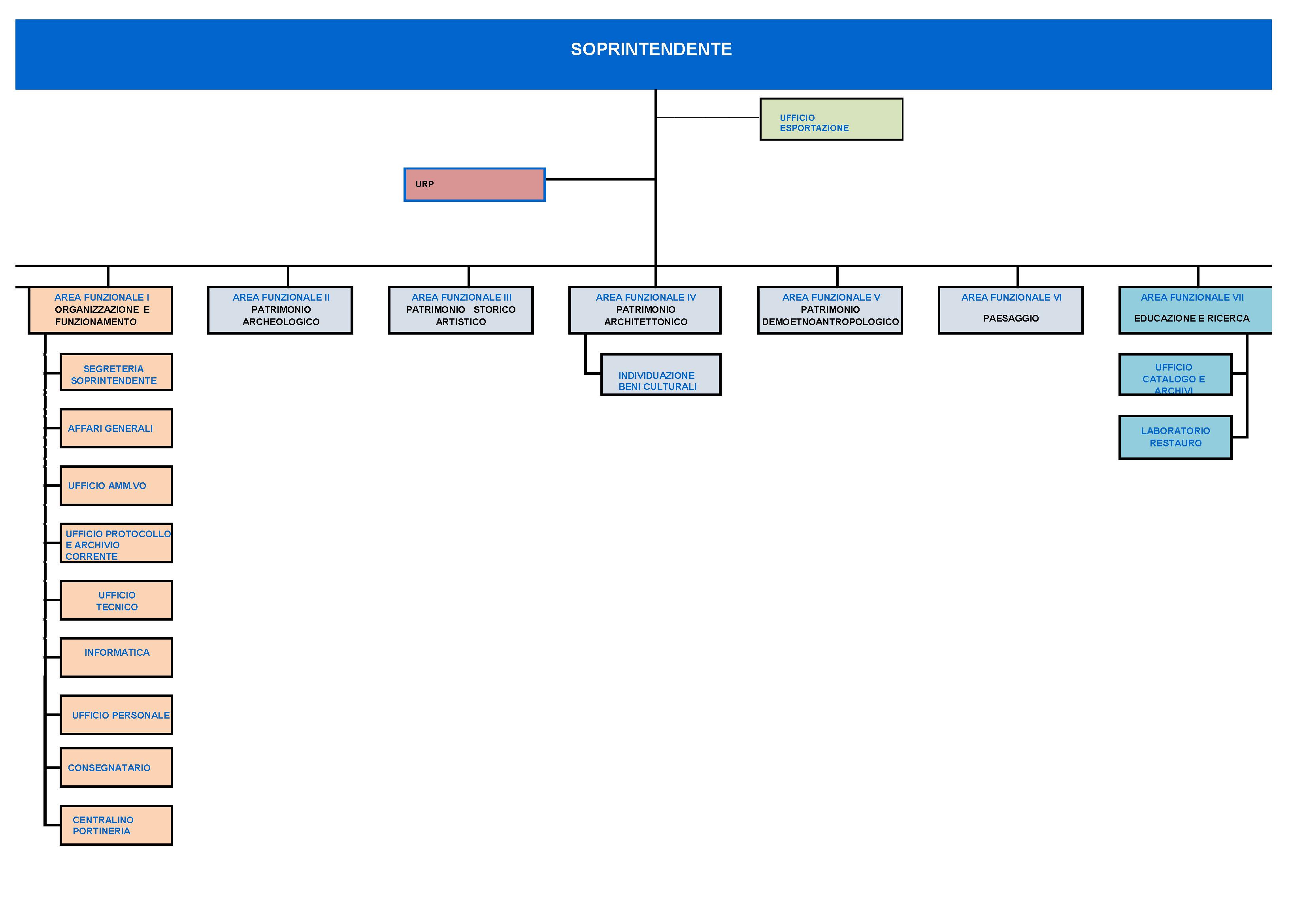 Organigramma grafico